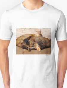 Twin Kittens T-Shirt
