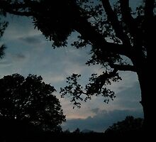 Stormy Eve by Corri Gryting Gutzman