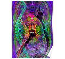 Evolutionary snake charmer   Poster