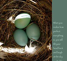 Bluebird Eggs with Buddha Quote by Heidi Hermes