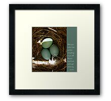 Bluebird Eggs with Buddha Quote Framed Print