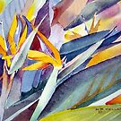 Bird of Paradise by Norman Kelley