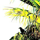 Crow On The Watch From A Palm Tree by CissieMayHaines