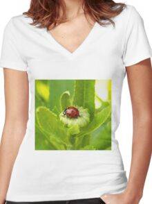Macro Ladybug on Garden Plant Women's Fitted V-Neck T-Shirt