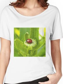 Macro Ladybug on Garden Plant Women's Relaxed Fit T-Shirt