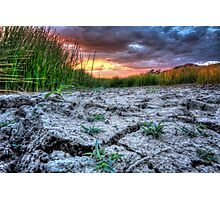 Ground Level Sunset Photographic Print