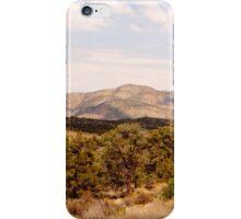Desert Brush iPhone Case/Skin