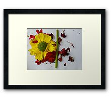 Art from Fading Flowers - UPDATE Framed Print