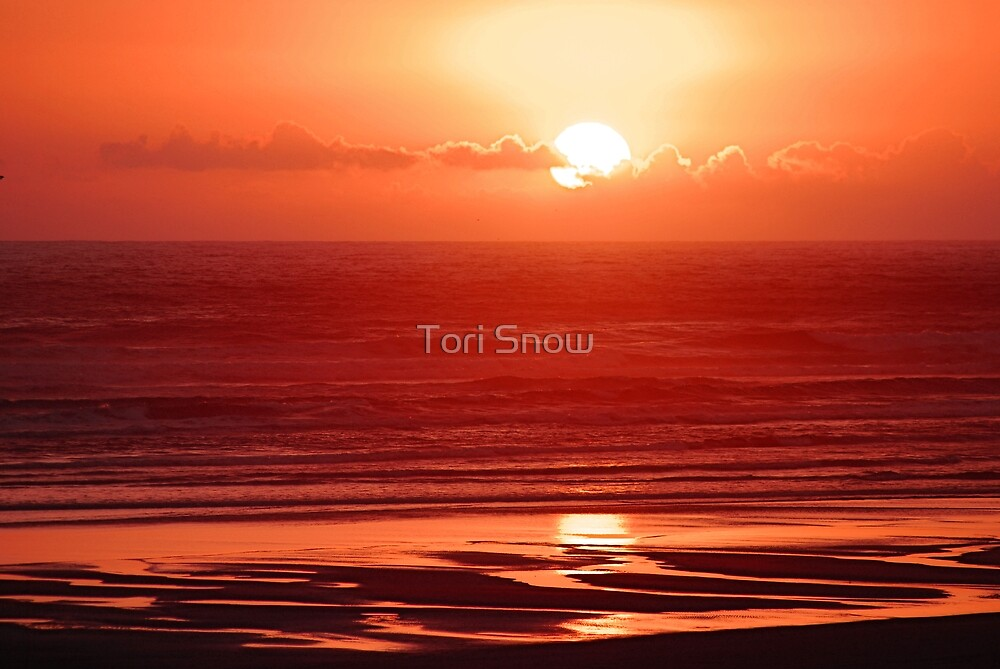 Red Sunset by Tori Snow