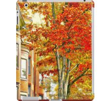 South End iPad Case/Skin