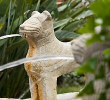 Spanish Cat Fountain  by Vanessa Goodrich