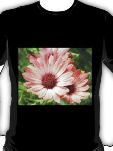 Macro Pink Cinnamon Tradwind Daisy Flower in the Garden T-Shirt