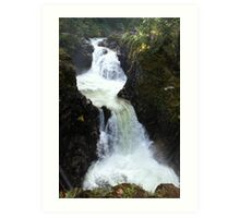 Little Qualicum Falls Provincial Park, Vancouver Island Art Print