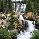 Tangle Falls, Jasper National Park by Teresa Zieba