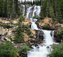 Tangle Falls, Jasper National Park by Teresa Zieba