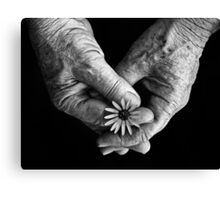 Age and Simple Beauty Canvas Print
