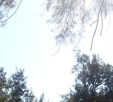 Sofala Sky by sofalansw