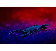 Sci-Fi Scorpio Photographic Print