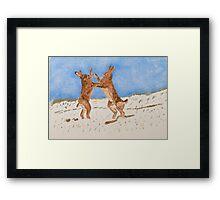 Boxing Hare Framed Print