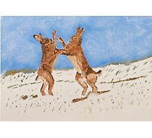 Boxing Hare Photographic Print