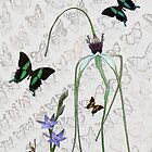 Butterflies & Orchids 2 by Leonie Mac Lean