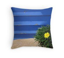 Below the Bathing Box Throw Pillow