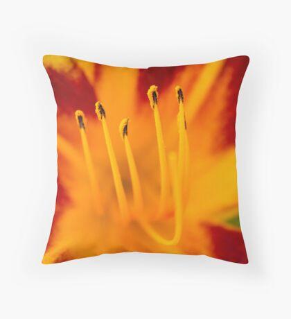 Pollen Bloom Macro Throw Pillow