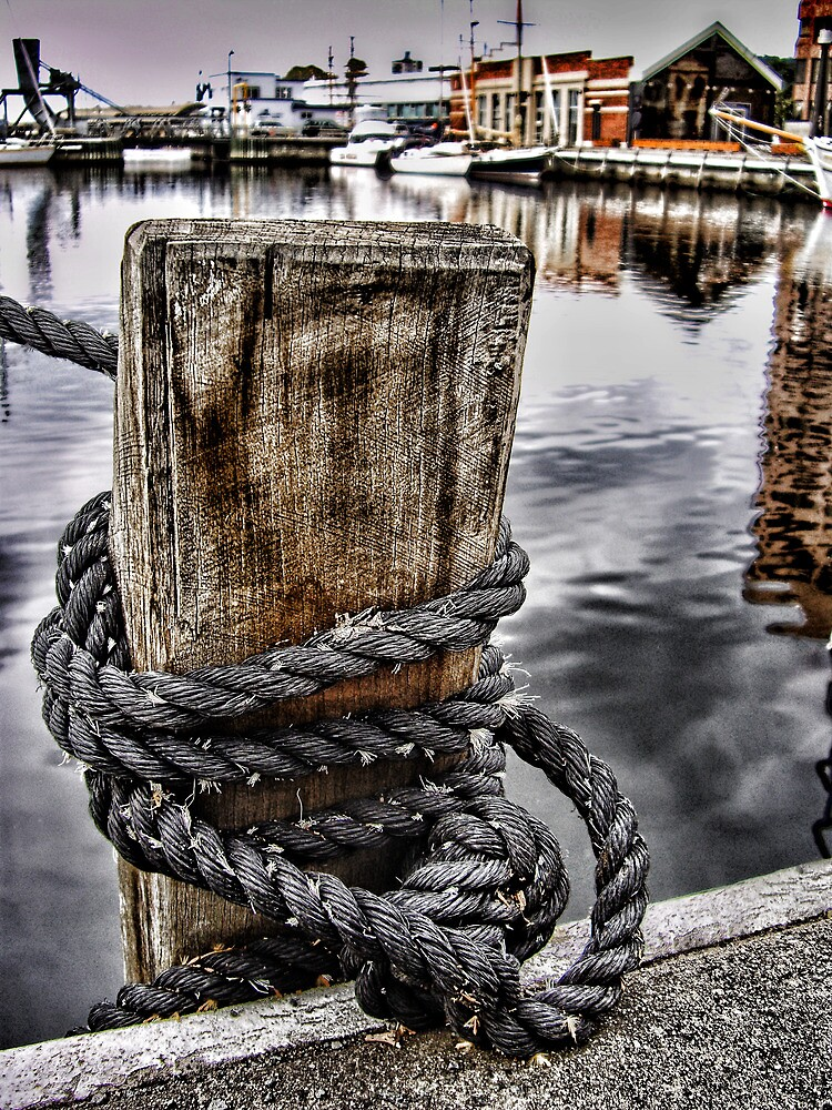 Harbour Mooring by Janet Rogerson