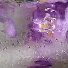 The magic of ice by © Pauline Wherrell