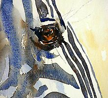 Eye of a Zebra by Debbie Schiff