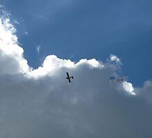 Sky40 by SHRBR