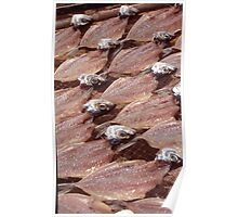 Sardines Drying In The Sun Poster