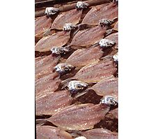 Sardines Drying In The Sun Photographic Print