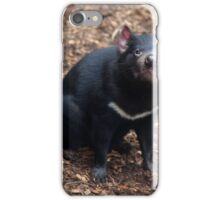 Tasmanian Devil iPhone Case/Skin