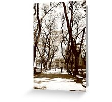 Walk in Argentina Park Greeting Card