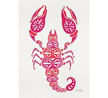Pink Scorpion Photographic Print