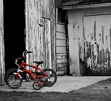 Tricycle at the Barn by Merlina Capalini