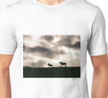 Evening Horses Derry, Ireland. Unisex T-Shirt