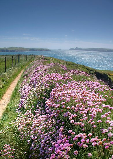 Pembrokeshire Coastal Path by Bob Culshaw