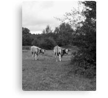 Who you looking at?! Canvas Print