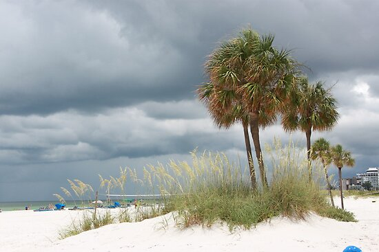 St Petersburg Beach Florida watching a storm roll in. by Missy Yoder