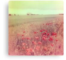 Poppy Fields #2 Canvas Print