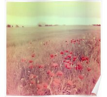 Poppy Fields #2 Poster