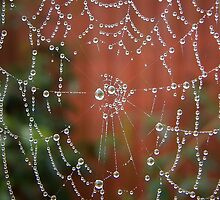Jewelled Web by JJsEscape