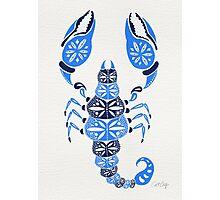Blue Scorpion Photographic Print