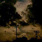 The storm by Morgan Koch