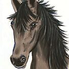 Grey Mare by Dawn B Davies-McIninch