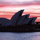 Sydney Opera House by Waqar