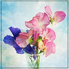 My Sweet Peas by Nick  Kenrick Photography