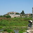 Temple of Artemis, Ephesus, Turkey by Maria1606